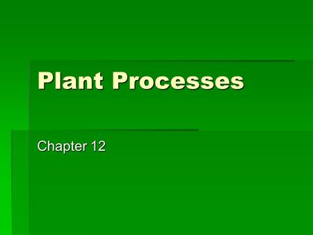 Plant Processes Chapter 12.