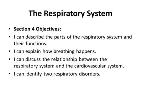The Respiratory System Section 4 Objectives: I can describe the parts of the respiratory system and their functions. I can explain how breathing happens.