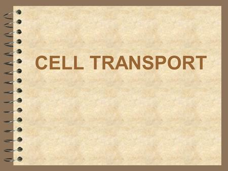 CELL TRANSPORT. WHAT IS THE FUNCTION OF THE CELL MEMBRANE? Regulates what enters and leaves the cell Provides protection Provides support.