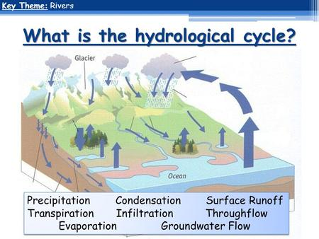 What is the hydrological cycle? Key Theme: Rivers Precipitation Condensation Surface Runoff Transpiration Infiltration Throughflow Evaporation Groundwater.