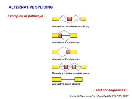 Examples of pathways... ALTERNATIVE SPLICING Irimia & Blencowe Curr Opin Cell Biol 24:323, 2012.