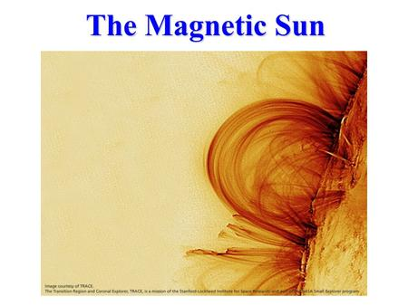The Magnetic Sun. What is the Sun? The Sun is a Star, but seen close-up. The Stars are other Suns but very far away.