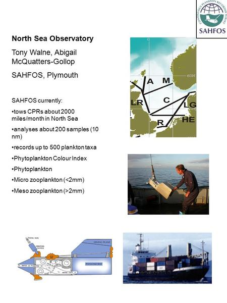 North Sea Observatory Tony Walne, Abigail McQuatters-Gollop SAHFOS, Plymouth SAHFOS currently: tows CPRs about 2000 miles/month in North Sea analyses about.