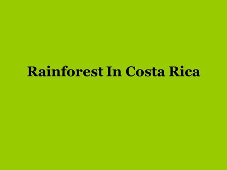 Rainforest In Costa Rica. Covering less than 2 percent of the Earths total surface area, the world's rainforests are home to 50 percent of the Earths.