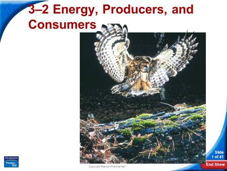 End Show Slide 1 of 41 Copyright Pearson Prentice Hall 3–2 Energy, Producers, and Consumers.