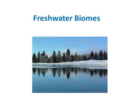 Freshwater Biomes. A biome that includes wetlands, streams, rivers, ponds and lakes Water has a low salt concentration.