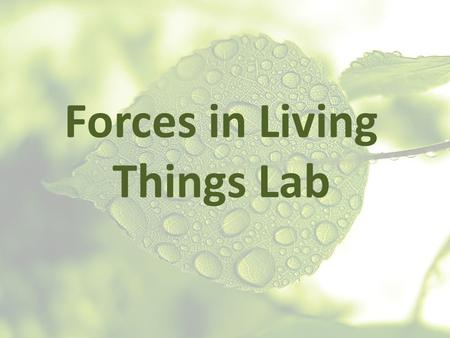 "Forces in Living Things Lab. In science, there is a very specific definition for the word ""work"" Work only takes place if there is a force and a motion."