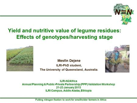 Putting nitrogen fixation to work for smallholder farmers in Africa Yield and nutritive value of legume residues: Effects of genotypes/harvesting stage.