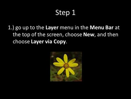 Step 1 1.) go up to the Layer menu in the Menu Bar at the top of the screen, choose New, and then choose Layer via Copy.