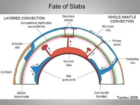 Fate of Slabs. Invert P waves for 3-D mantle structure 10 million travel times: ISC, NEIC, temporary arrays 0.5 million earthquakes Ray theory & 3-D sensitivity.