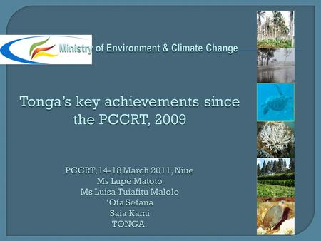  Key achievements since the PCCRT, 2009  Current climate change projects  JNAP process  JNAP Implementation status  Challenges/lessons learned 