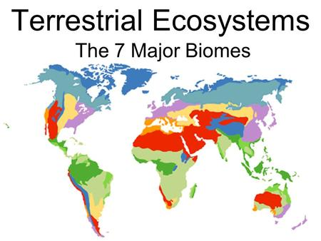 The 7 Major Biomes Terrestrial Ecosystems. Tundra Tree-less – has no trees Permafrost- a permanently frozen layer of soil under the surface.