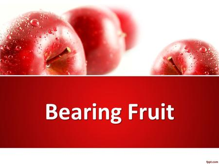 Bearing Fruit. Parable of the sower (Luke 8:4-15) Important fruit-bearing plants – Fig trees (eaten fresh, dried, jams) – Grapevines (beverage, disinfectant)