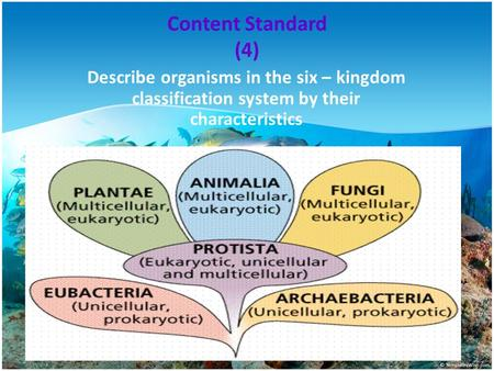 Content Standard (4) Describe organisms in the six – kingdom classification system by their characteristics.