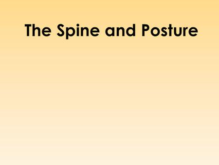  Posture means position  Posture is the body's alignment and positioning with respect to COG.  Attitude of the body, the relative alignment of body/limb.