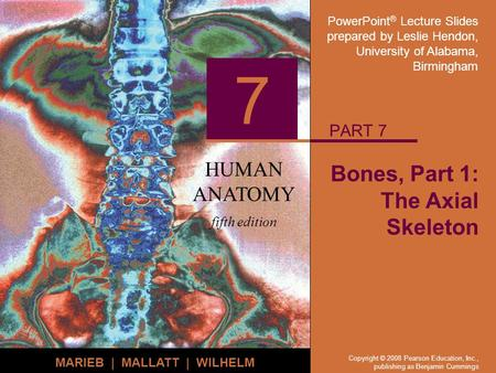 PowerPoint ® Lecture Slides prepared by Leslie Hendon, University of Alabama, Birmingham HUMAN ANATOMY fifth edition MARIEB | MALLATT | WILHELM 7 Copyright.