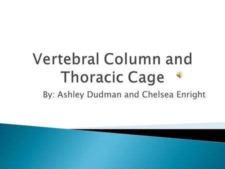 By: Ashley Dudman and Chelsea Enright Cervical Thoracic Lumbar Sacral.