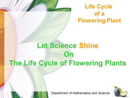 Life Cycle of a Flowering Plant Department of Mathematics and Science Let Science Shine On The Life Cycle of Flowering Plants.