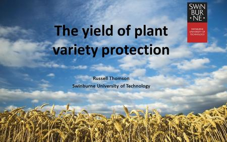 The yield of plant variety protection Russell Thomson Swinburne University of Technology 1.