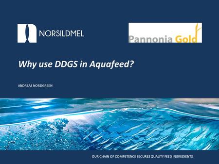 Potential of using DDGS in feed for European Sea Bass Andreas Nordgreen, Katerina Kousoulaki and Helena Peres Klikk for å redigere tittelstil OUR CHAIN.