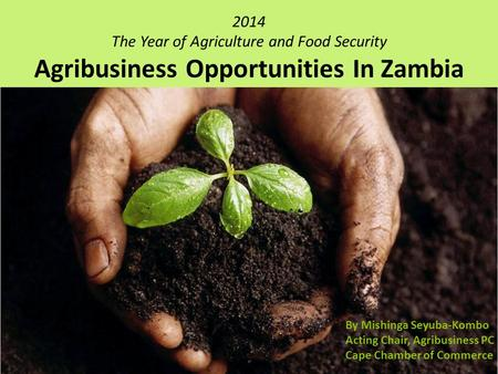 2014 The Year of Agriculture and Food Security Agribusiness Opportunities In Zambia By Mishinga Seyuba-Kombo Acting Chair, Agribusiness PC Cape Chamber.