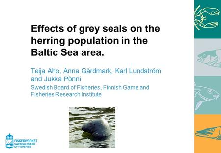 Effects of grey seals on the herring population in the Baltic Sea area. Teija Aho, Anna Gårdmark, Karl Lundström and Jukka Pönni Swedish Board of Fisheries,