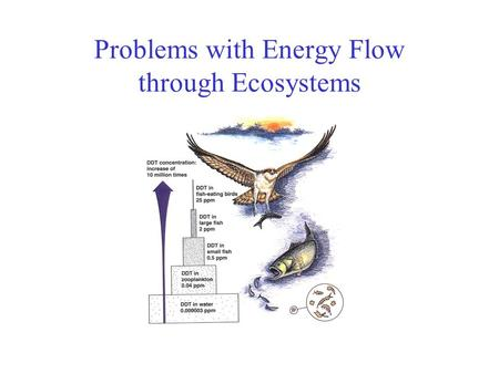 Problems with Energy Flow through Ecosystems. Energy transfer between trophic levels is inefficient Only 10% of the energy present in a given trophic.