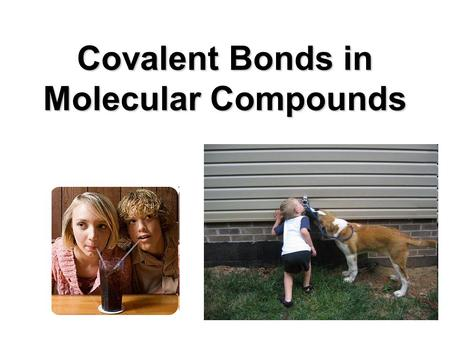 Covalent Bonds in Molecular Compounds. There are two types of covalent bonding 1. Non-polar bonding with an equal sharing of electrons. 2. Polar bonding.