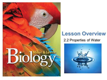 Lesson Overview Lesson Overview Properties of Water Lesson Overview 2.2 Properties of Water.