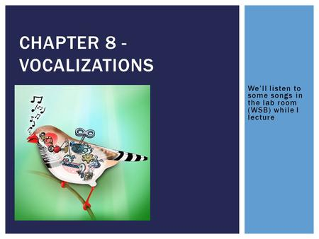 We'll listen to some songs in the lab room (WSB) while I lecture CHAPTER 8 - VOCALIZATIONS.