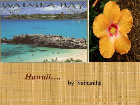 Hawaii…. by Samantha. 2 Menu State Symbols Famous Hawaiians Map Foods License Plate State Seal State Nickname State Capital Why Should people go to my.