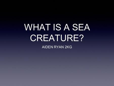 WHAT IS A SEA CREATURE? AIDEN RYAN 2KG. What is a sea creature? Animals like whales and fish spend all their lives in the sea. There are more than 24,000.