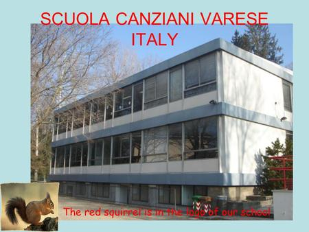 SCUOLA CANZIANI VARESE ITALY The red squirrel is in the logo of our school.