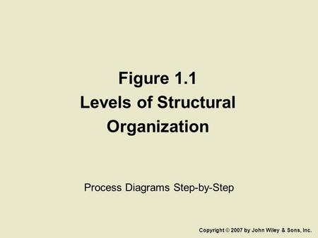 Figure 1.1 Levels of Structural Organization Process Diagrams Step-by-Step Copyright © 2007 by John Wiley & Sons, Inc.