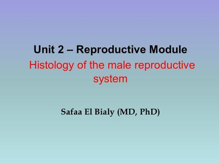 reproductive system module Apc100/modules/reproductive/mammal/testis0/testis3html the sperm are  formed.