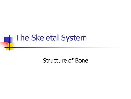 The Skeletal System Structure of Bone. Skeletal System The entire framework of bone and their associated cartilages Each individual bone is considered.