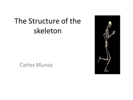 The Structure of the skeleton Carlos Munoz. Session aims To understand the definitions for the 'axial skeleton' and 'appendicular skeleton.' To identify.
