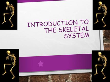 INTRODUCTION TO THE SKELETAL SYSTEM. OBJECTIVES BE ABLE TO LIST THE GENERAL FUNCTIONS OF THE SKELETAL SYSTEM IDENTIFY THE PARTS OF THE SKELETAL SYSTEM.