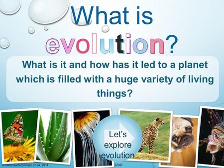 © www.teachitprimary.co.uk 2014225871 What is it and how has it led to a planet which is filled with a huge variety of living things? Let's explore evolution.