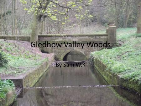 Gledhow Valley Woods By Sam W.K. Examples One day in the school holidays I saw some boys in the woods, they were throwing a glass bottle into the trees.