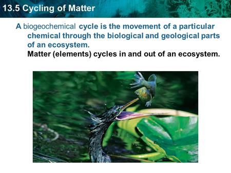 13.5 Cycling of Matter A biogeochemical cycle is the movement of a particular chemical through the biological and geological parts of an ecosystem. Matter.