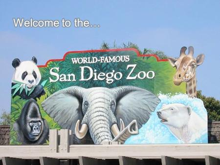 Goal Middle school students grade 6-8 will be taking a virtual field trip to the San Diego Zoo in San Diego, California.San Diego Zoo The students will.