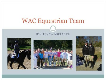 BY: JENNA MORANTE WAC Equestrian Team. Why The Equestrian Team? I chose to do my final project on the WAC Equestrian Team because It's something I enjoy.