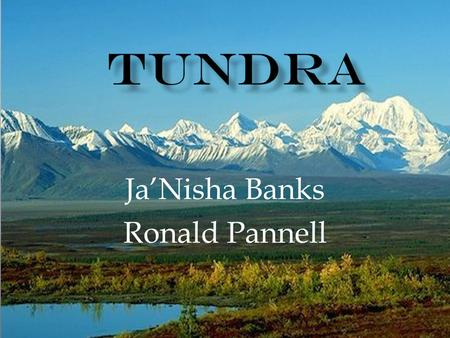 Ja'Nisha Banks Ronald Pannell.  Arctic tundra is located in the northern hemisphere, extending south to the coniferous forests of the taiga  average.