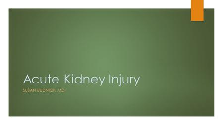 Acute Kidney Injury SUSAN BUDNICK, MD. What is an Acute Kidney Injury?  AKI is a heterogeneous group of conditions that are all characterized by an acute.
