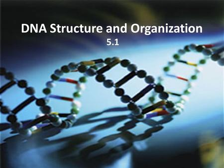 DNA Structure and Organization 5.1. What is DNA? DNA = deoxyribonucleic acid The discovery of DNA and its role in genetics unfolded over many years...