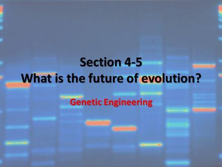 Section 4-5 What is the future of evolution? Genetic Engineering.