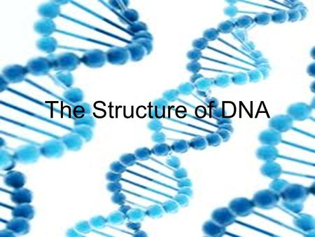 The Structure of DNA. DNA: The Genetic Material Mendel (1800's) showed that traits are passed from parents to offspring.