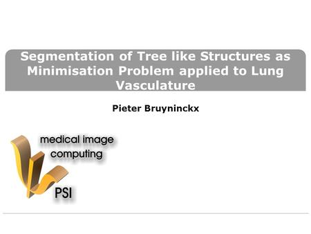 Segmentation of Tree like Structures as Minimisation Problem applied to Lung Vasculature Pieter Bruyninckx.