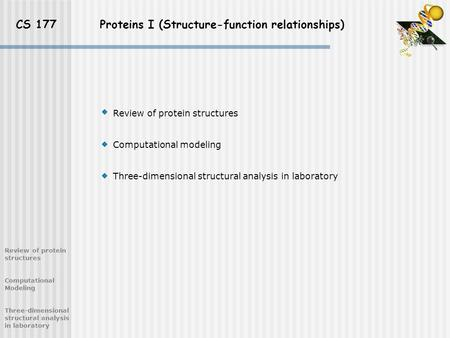 CS 177 Proteins I (Structure-function relationships) Review of protein structures Computational Modeling Three-dimensional structural analysis in laboratory.